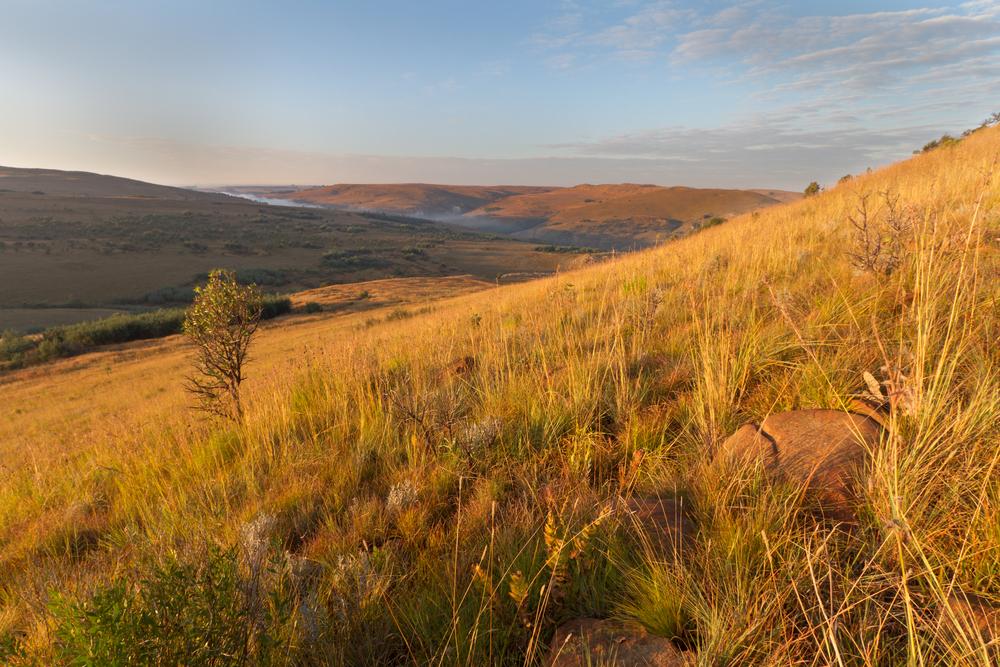 landscape Mpumalanga Highlands