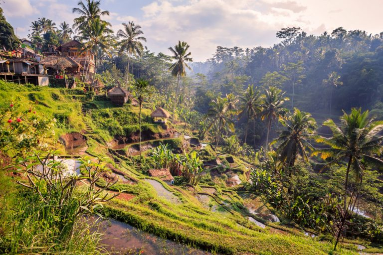 bali jungle tour for women