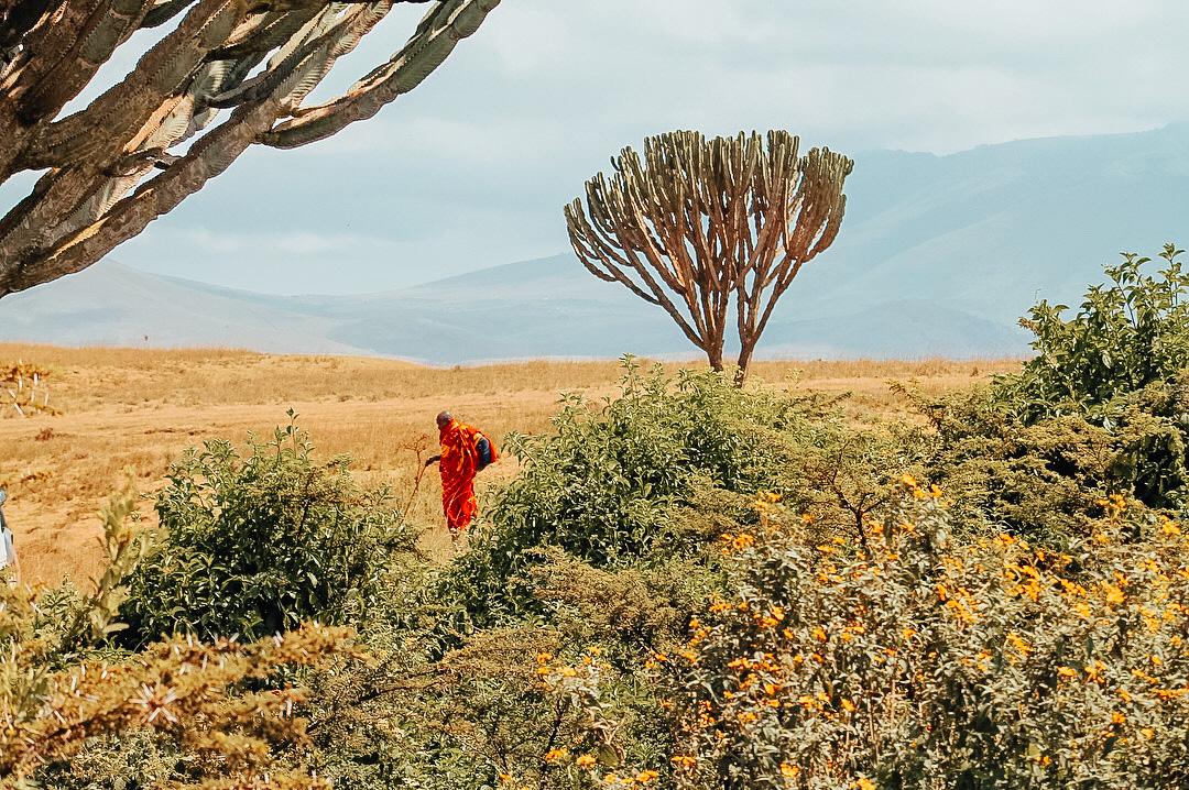 Massai Mara solo female tour