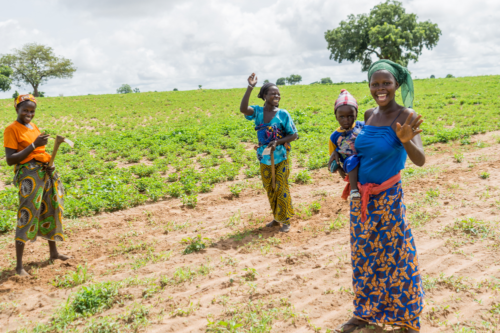 women on a field in Africa