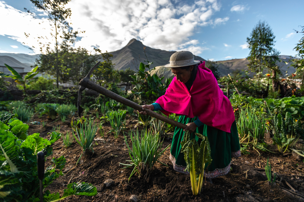 a woman working the fields in Ecuador