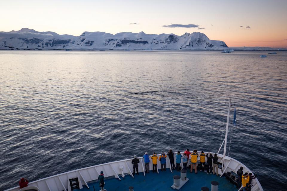 Boat Antarctica tour for women